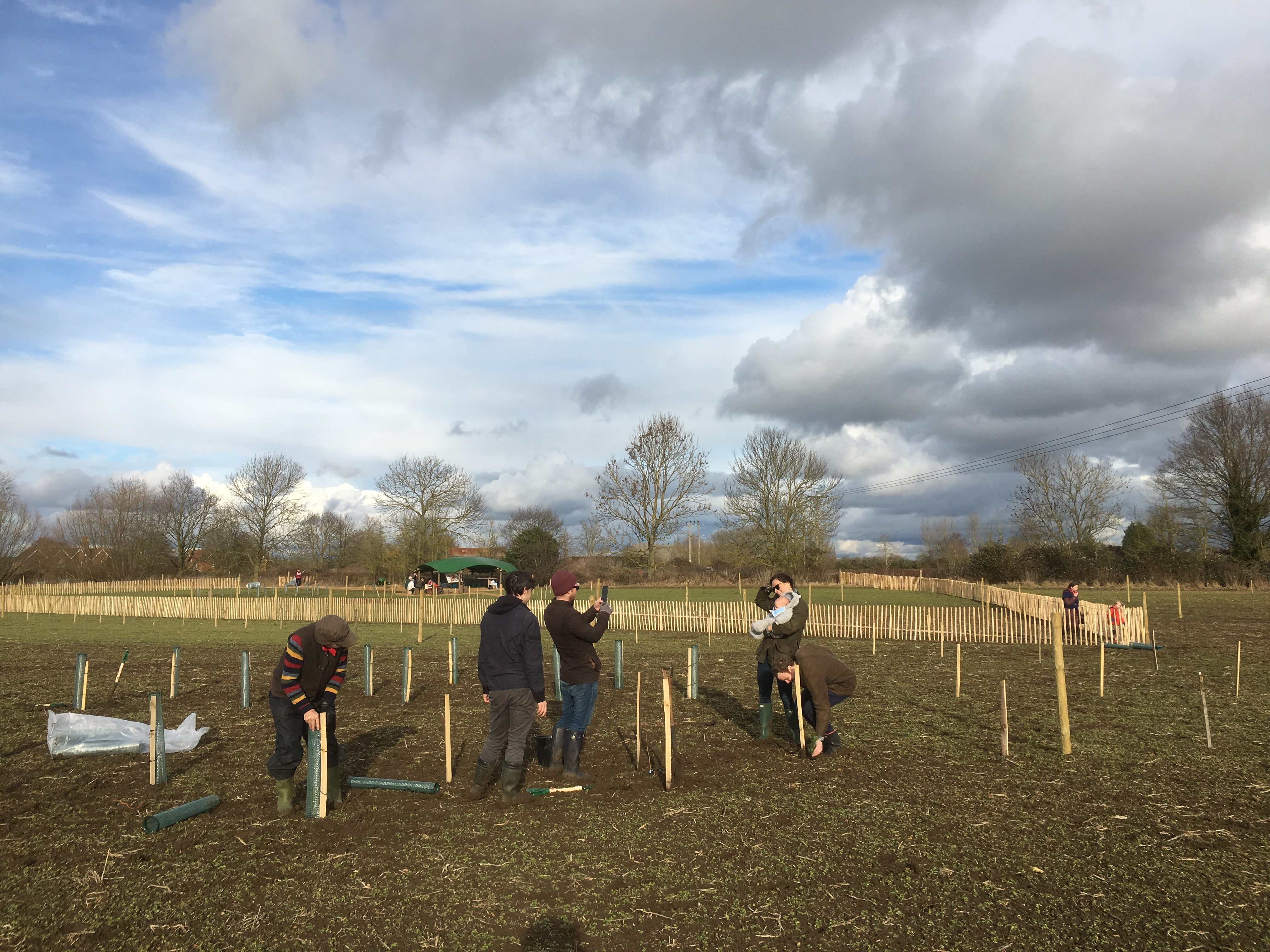Forest Friends celebrating successful planting