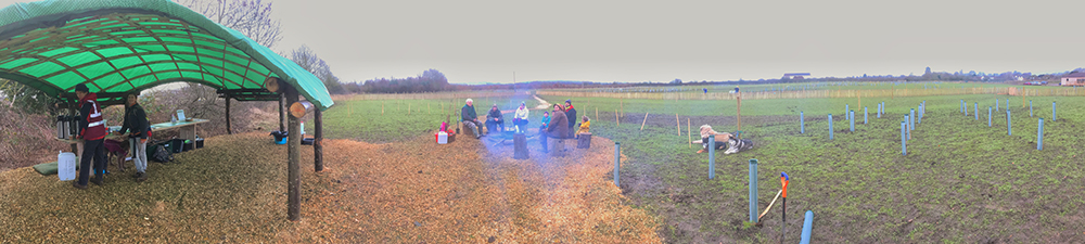 180-degree panorama during the first planting weekend